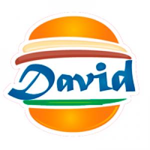 David Lanches